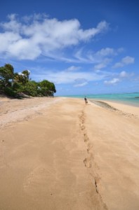 Leave nothing but footprints - thank you Tonga