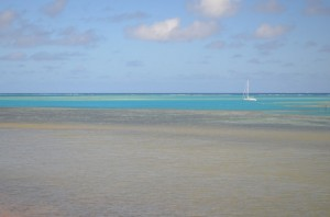 Adina surrounded and protected by reef in Oua